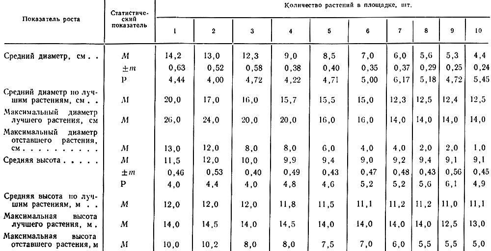 Характеристика роста кедра