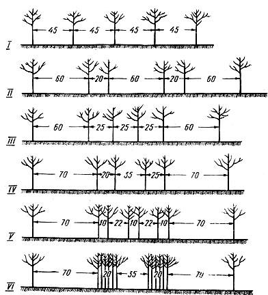 Схема однорядного и ленточных