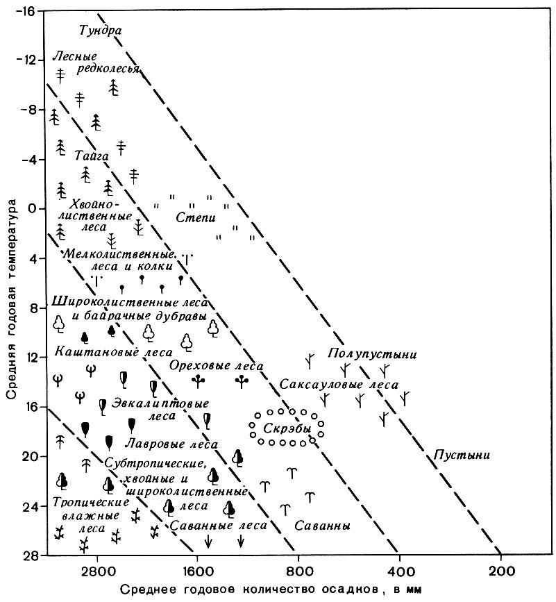 Схема биоценотических и