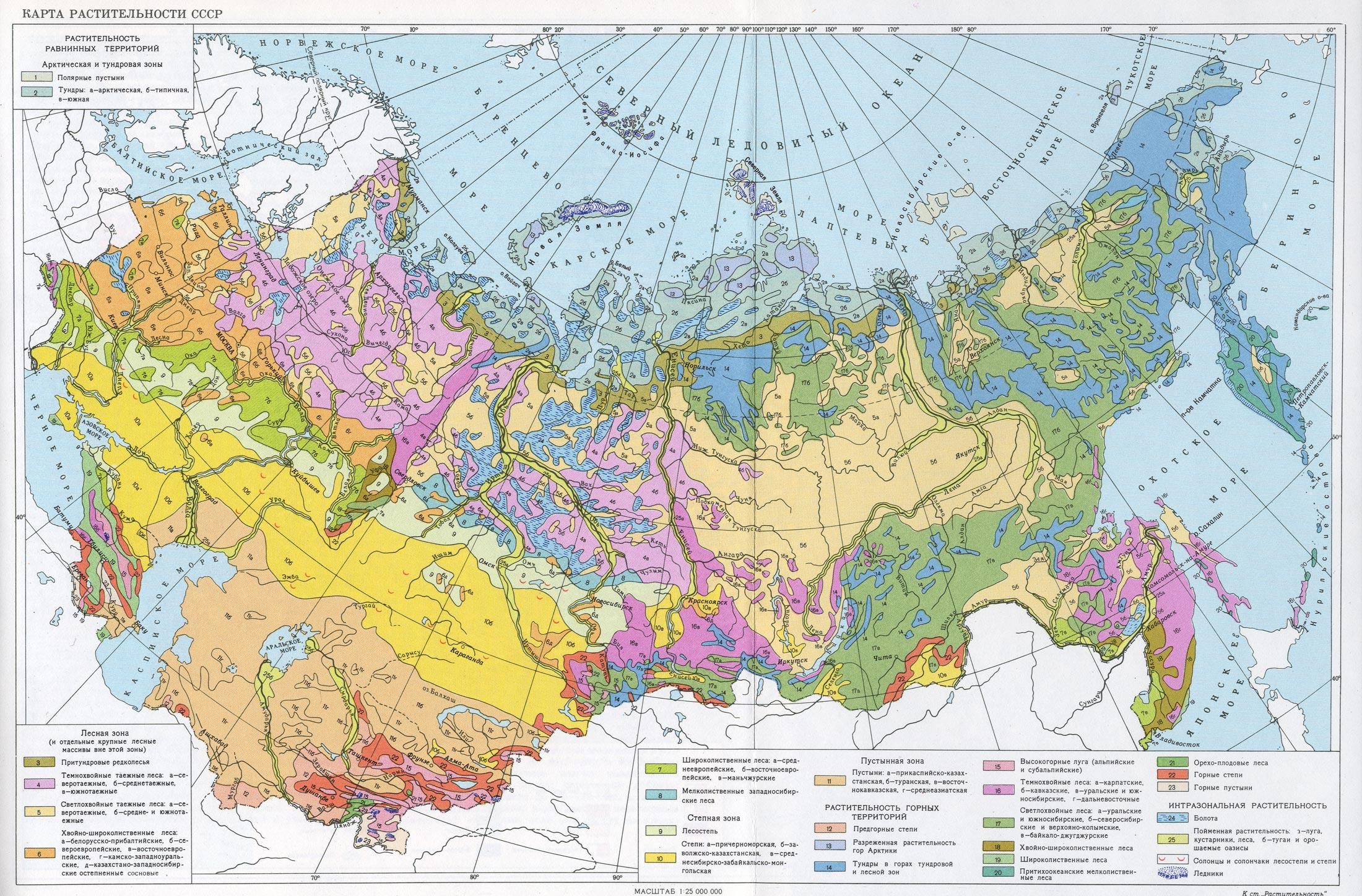 Карта растительности СССР.: dendrology.ru/forest/item/f00/s00/e0000159/index.shtml